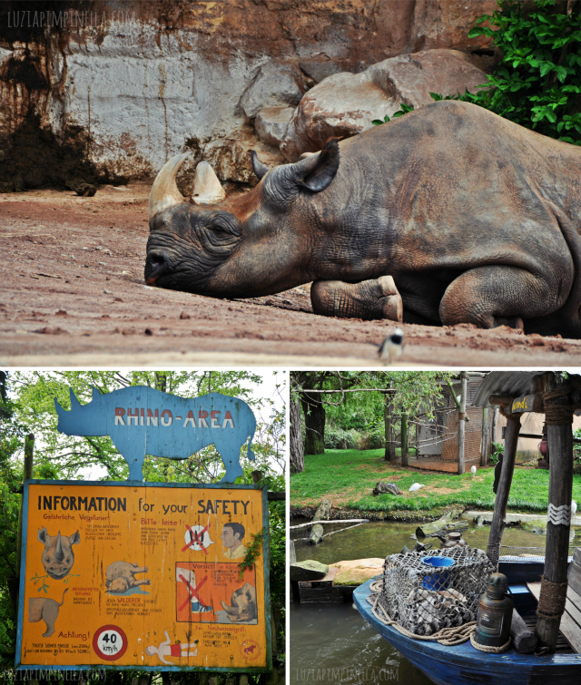 luzia pipinella BLOG | travel tuesday | ein tag im erlebnis-zoo hannover | a day at the zoo hannover, germany