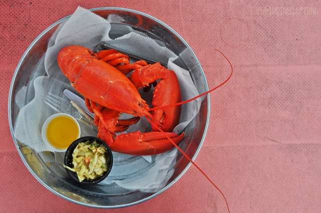 luzia pimpinella blog | travel tuesday |maine hummer - eine delikatesse | maine lobster - a delicate food