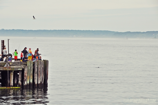 luzia pimpinella blog | travel portland maine| angler an der casco bay | fishermen at the casco bay