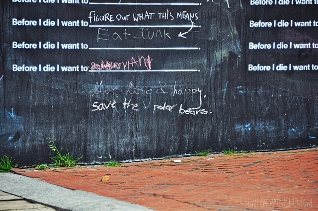 luzia pimpinella blog | travel portland maine | before i die i want to tafelwand | chalk wall
