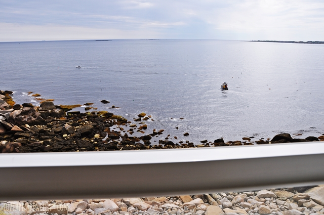 luzia pimpinella | travel | neuengland: pension am meer in rockport MA | new england: seaside B&B in rockport MA