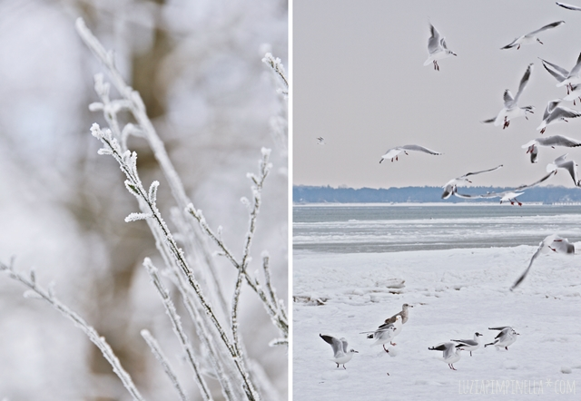 luzia pimpinella | travel | ostsee winter | baltic sea winter