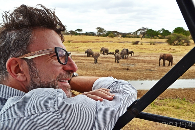 luzia pimpinella | travel tanzania | safari tarangire national park - stephan loves elephants