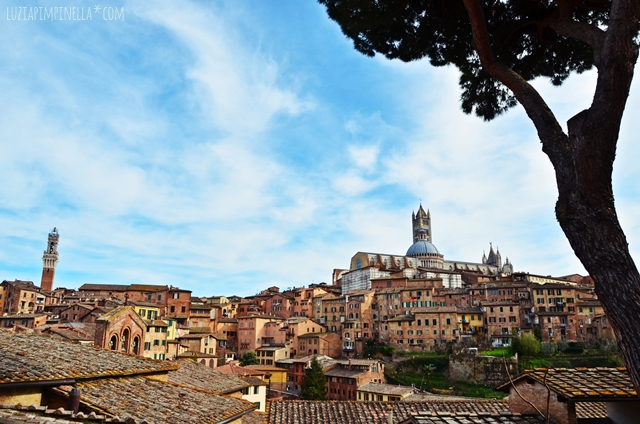 travel toskana | 6 lieblingsorte in siena | 6 must-dos in siena tuscany | luzia pimpinella